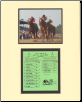 Affirmed Kentucky Derby Mini Collage
