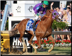 California Chrome 2014 Preakness Stakes Finish 2