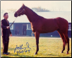 Dr. Fager John Nerud Aqueduct Barn Photo 8x10 Signed