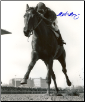 Dr. Fager Withers Stakes 8x10 Photo Signed