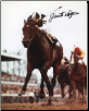 Foolish Pleasure 1975 Kentucky Derby 8x10 Signed