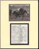 Forego 1977 Woodward Stakes Mini Collage