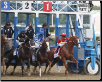 Justify 2018 Belmont Stakes Gate Photo