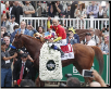 Justify 2018 Belmont Stakes Winner's Circle Photo