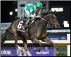 Royal Delta 2011 Breeders Cup Ladies Classic #2
