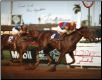 A.P. Indy 1992 Breeders' Cup Classic 8x10 Signed