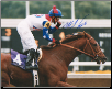 Azeri 2002 Breeders' Cup Distaff 8x10 Photo Signed