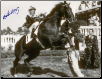 Chateaugay 1963 Ky. Derby Winners Circle Photo Signed 8×10