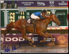 Curlin 2007 BC Classic #2 8x10 Photo Signed