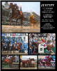 Justify 2018 Triple Crown Collage