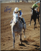 Lady's Secret 1986 BC Distaff 8x10 Signed