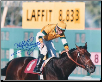 Laffit Pincay Jr. Record Breaking Signed Photo