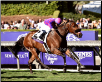 Obviously 2016 Breeders' Cup Sprint