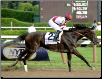 Royal Delta 2013 Personal Ensign Stakes