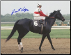 Ruffian 1975 Mother Goose Stakes 8x10 Photo Signed