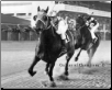 "Seabiscuit ""The Match Race"""