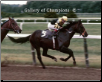Seattle Slew 1977 Belmont Stakes #417