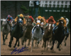 Silver Charm Kentucky Derby #3 8x10 Photo Signed Gary Stevens