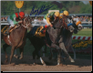 Silver Charm Preakness Stakes #1 Photo 8x10 Signed
