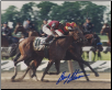 Victory Gallop 1998 Belmont Stakes 8x10 Photo Signed