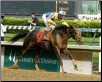 Street Sense 2007 Kentucky Derby Photo Finish