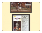 Affirmed Preakness Stakes Mini Collage