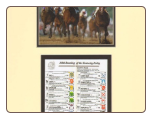 Alysheba Kentucky Derby Mini Collage