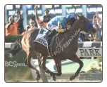 American Pharoah 2015 Belmont Stakes Finish Photo 8×10 Signed