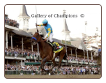 American Pharoah 2015 Kentucky Derby Remote Photo 16×20 Signed Framed