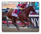 Justify 2018 Belmont Stakes Finish
