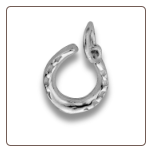 Sterling Silver Horseshoe Pendant and Chain
