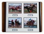 Triple Crown Commemorative 1973-2015
