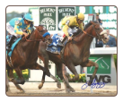 Union Rags 2012 Belmont Stakes 8×10 Signed John Velazquez