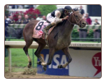 2009 Kentucky Derby Mine That Bird