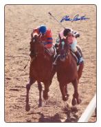 Affirmed 1978 Belmont Stakes #412 8x10 signed
