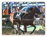 American Pharoah 2015 Belmont Stakes Finish Photo