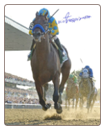 American Pharoah 2015 Belmont Stakes Remote Photo 8×10 Signed