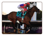 Authentic 2020 Breeder's Cup Classic Winning Photo