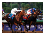 Bayern 2014 Breeders' Cup Classic Signed