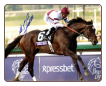 Royal Delta 2012 Breeders Cup Ladies Classic Signed Mike Smith
