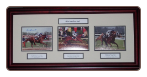 Secretariat Triple Crown Mini Triple Signed