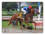 Summer Bird 2009 Travers Stakes