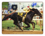 Sunday Silence 1989 Preakness Stakes 8x10 Signed Photo #2